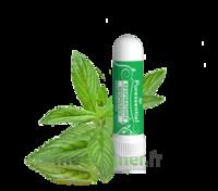 PURESSENTIEL RESPIRATOIRE Inhalation nasal 19 huiles essentielles à ALBI