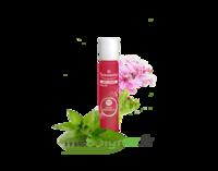 PURESSENTIEL ANTI-PIQUE Roller 11 huiles essentielles à ALBI