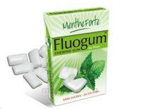 FLUOGUM Chew gum dragée menthe forte à ALBI