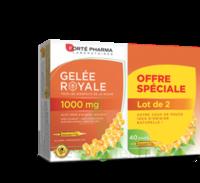 Forte Pharma Gelée royale 1000 mg Solution buvable 2*B/20 Ampoules/10ml à ALBI