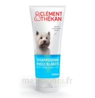 Clément Thékan Shampooing poils blancs T/200ml à ALBI